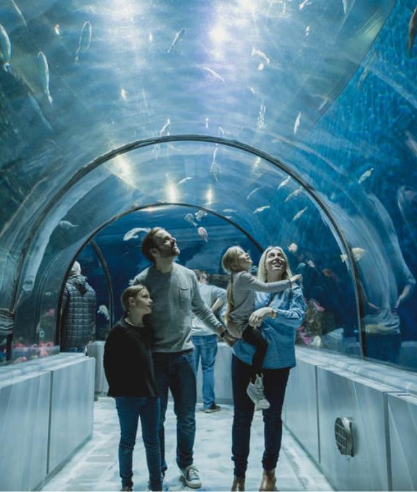 Forfait aventure à l'Aquarium du Québec